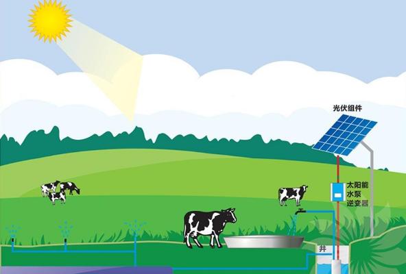 沙漠光伏太阳能水泵系统